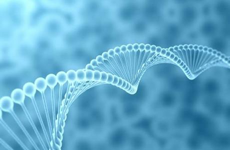 苏州瑞安生物科技manbetx体育软件下载